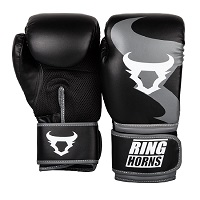 CHARGER BOXING GLOVES