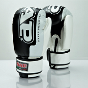 RAPTOR 10oz BOXING GLOVES