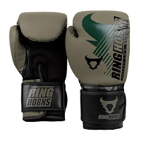 CHARGER 2.0 BOXING GLOVES